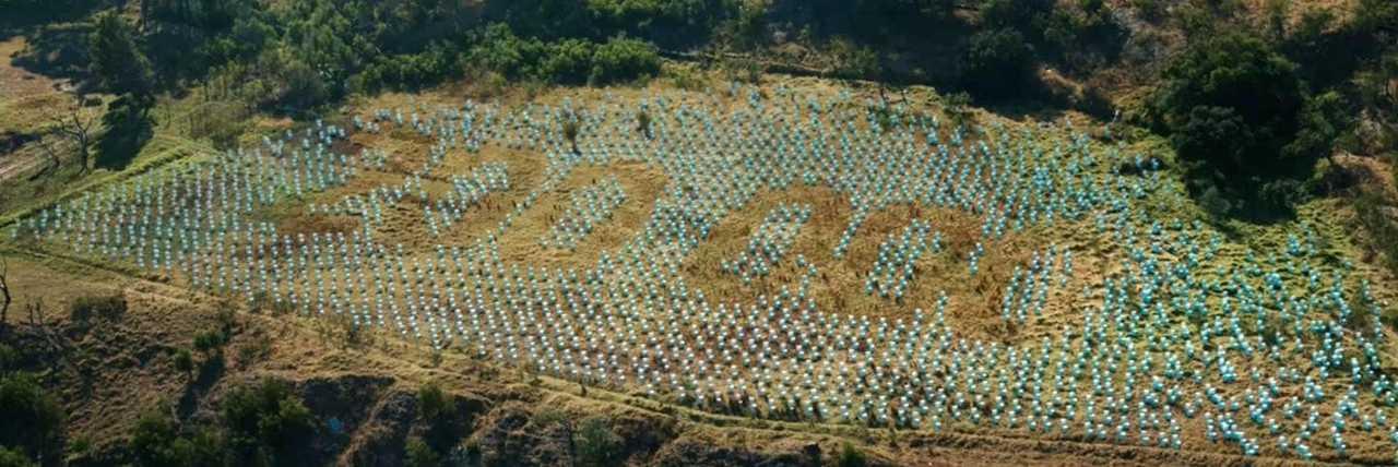 Toalety na polu (Domestos pomógł zbudować 200 000)