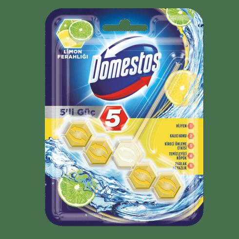 5'li Güç Tuvalet Bloğu Limon Ferahlığı